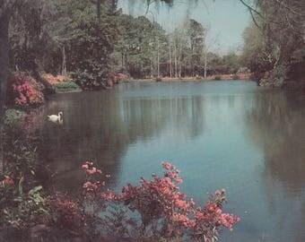 Theodore, Alabama Vintage Postcard - Bellingrath Gardens, Mirror Lake, Fowl River, Mobile Bay, Botanical Wonderland