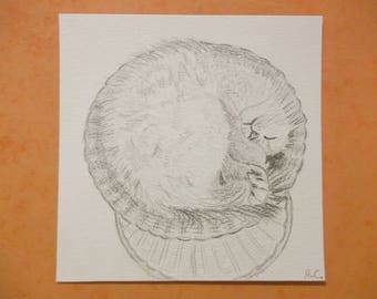 The NAP time - cat in a wicker basket with pencil 14 x 14 cm