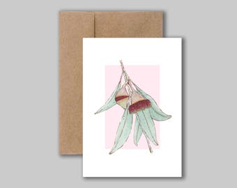 Silver princess, Australian native eucalyptus watercolour illustration art print card. Blank greeting, birthday, thank you card.