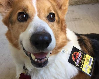 Custom Jurassic Park K-9 Unit ID Badges for you and your Dog