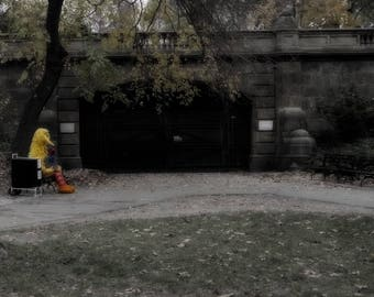 Alone in Central Park, New York, Photo Print
