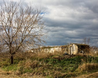 Autumn Landscape, fall, country, tree, cellar, green, clouds, overcast,