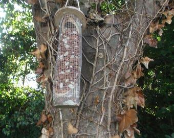 Bird nut feeder