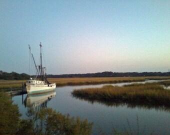 Jarvis Creek Twilight
