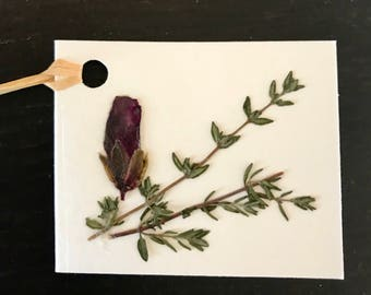 Real Pressed Flower Gift Tags