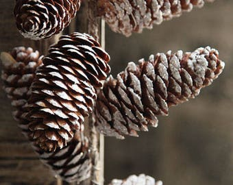 Glitter Pinecone Garland Table Runner Rustic Woodland Theme Decor Wedding Faux Pine Cone Hanging Outdoor Woodsy Mantle Table Woodland Winter
