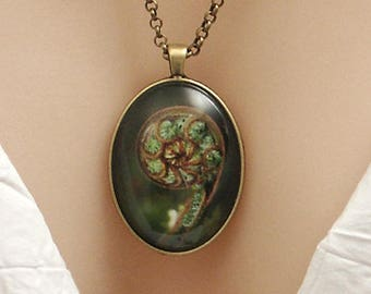NZ Fern photo, large oval picture pendant, 40x30mm, glass dome pendant, new zealand, koru, large pendant, cameo