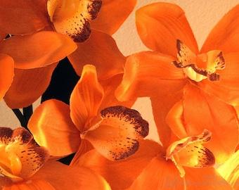 Orange & Yellow Flowers - Matted Photo Art, Various Sizes