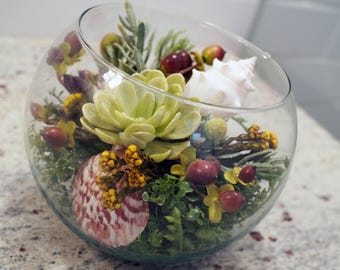 Terrarium with Assorted Artificial Succulents and Seashells