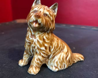 West Highland Terrier.                  Wade.