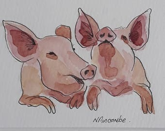 Laughing pig original watercolour painting framed and mounted