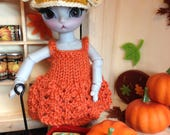 PUMPKIN Custom BJD Hujoo Gray Nano Freya Cat 12cm 1/12 Autumn Fall Halloween Doll by Sassy Grace
