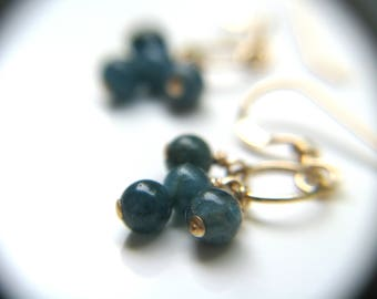 Blue Apatite Earrings . Ocean Blue and Gold Earrings Dainty . Small Gemstone Cluster Earrings . Tiny Hoop Earrings - Acai Palm Collection