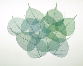 Green Leaves Bodhi Leaf Millinery