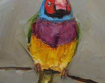 GOULDIAN FINCH BIRD Colette W. Davis Art Giclee print