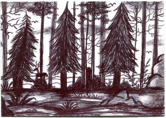 forest trees landscape Aceo drawing sketch ORIGINAL art illustration ink art ACEO art card ATC artist trading card