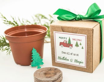 "12 Seed Paper Christmas Tree Gift Boxed Holiday Party Favor, Unique Garden Gift Idea, Personalized ""Merry Christmas"" Message, Plant a Tree"