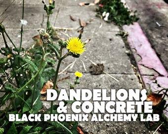 Dandelions & Concrete