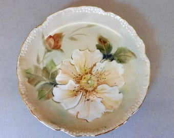 Hand Painted Pale Peach Wild Rose on a Porcelain Plate