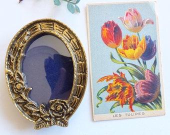 Roses Brass Photo Frame