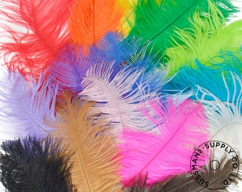 "Ostrich Feathers - Wholesale Wedding Feathers Ostrich Drab Plumes - Rainbow Colors - 16pcs (6-8"")"