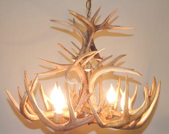 Whitetail Antler Chandelier made from real antler