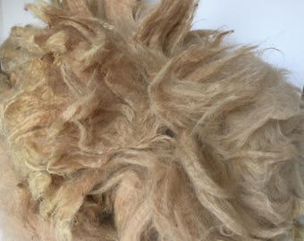 "Raw alpaca fleece, cria clip, 6-7"" staple, prime blanket by the half pound"