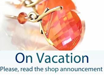 Orange Crystal Earrings 14k Gold Filled Hooks RARE Bead Swarovski Crystal Orange Dangle Earrings Red Orange Drop Earrings Crystal Jewelry