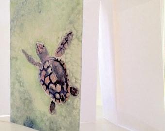 Sea turtle greeting cards, loggerhead turtle birthday cards, set of 4, blank inside, with envelopes, sea turtle art, Martha Kuper Brinson