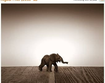 FLASH SALE til MIDNIGHT Nursery Decor, Baby animal art, Baby room ideas, Safari animals, Baby Elephant One Photo Print