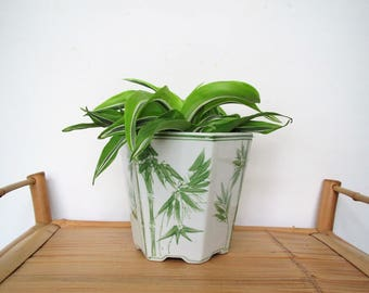 Vintage bamboo design planter/ Asian planter/ green and white