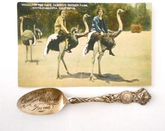 Antique Souvenir Spoon Sterling Silver Cawston Ostrich Farm California