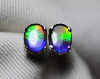 Ammolite Earrings, Ammolite Stud Earrings, Sterling Silver, 8x6mm Oval Cabochon, Alberta Canada Jewelry Jewellery, Pair #12