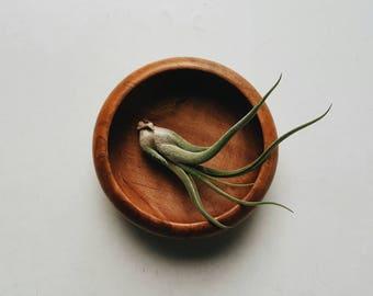 Small Wooden Bowl - Modern Farmhouse Accessory - Trinket Bowl - Minimalist