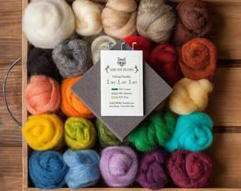 Needle Felting Kit - Beginner - DIY Kit - Starter - Wool Batting - Wool Roving - Gift - Learn a New Craft - Creative - Craft Kit - Tutorial