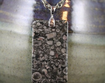 Clearance Sales - Crinoid Fossil Necklace - Item 1766