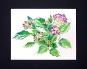 Pastel and Ink Pink Hydrangia Floral Drawing