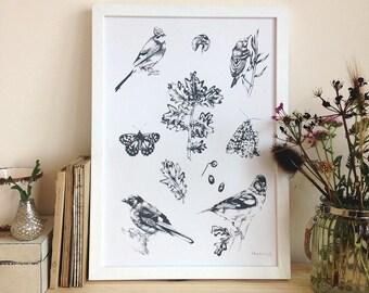 Birds Screen print
