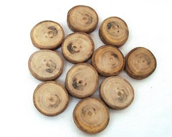 Walnut wood Slices Rustic Tree Branch Slices for Craft Natural Wood Slices Set of 11