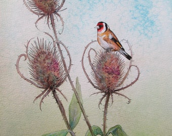 Goldfinch & Teasels. Signed Limited Edition Giclée Print
