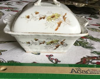 John Maddock & Sons England Square Butter Dish/Small Casserole and Lid-Yellow Daisies/Flowers Gold Trim