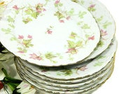 Eight Vintage Hutchenreuther China Dessert Salad Plates Maple Leaf Pattern