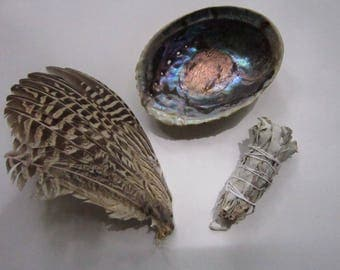 Smudge Kit Pheasant Feather Fan  Abalone Shell & White Sage  Smudging Tribal 2