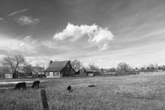 Fine Art Photography | The Farm Black and White  Print | Wall Art