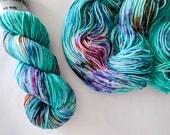 Spin DK Yarn Superwash Merino Handdyed Yarn: CASTOR
