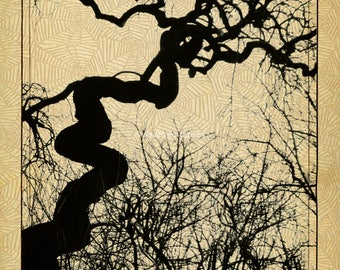 Mozartgrab Fine Art Print, Spooky, Travel, Austria, Tree Silhouette, Halloween, St. Marx Cemetery, Gothic, Cobwebs, Scary, Black