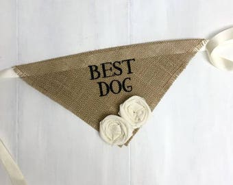 Small READY TO SHIP Natural Best Dog Bandana with Fabric Flowers Wedding Collar Flowers Engagement Save the Date Photo Prop