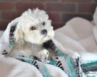 Minky Winter Mexican Blanket