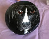 Pitbull Painted Rock, Dog Art, Dog Painting, 3D Painting, Dog Portrait, Etsy Gift, MelidasArt, RESERVED  for ANNE