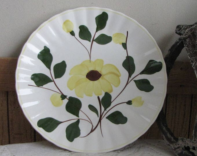 Southern Pottery Blue Ridge Yellow Rock Rose Pattern Vintage Farmhouse and Rustic Home Décor